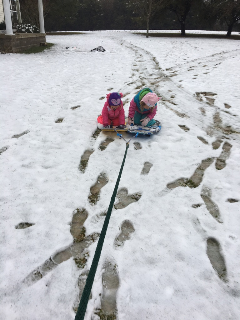 sledding without snow